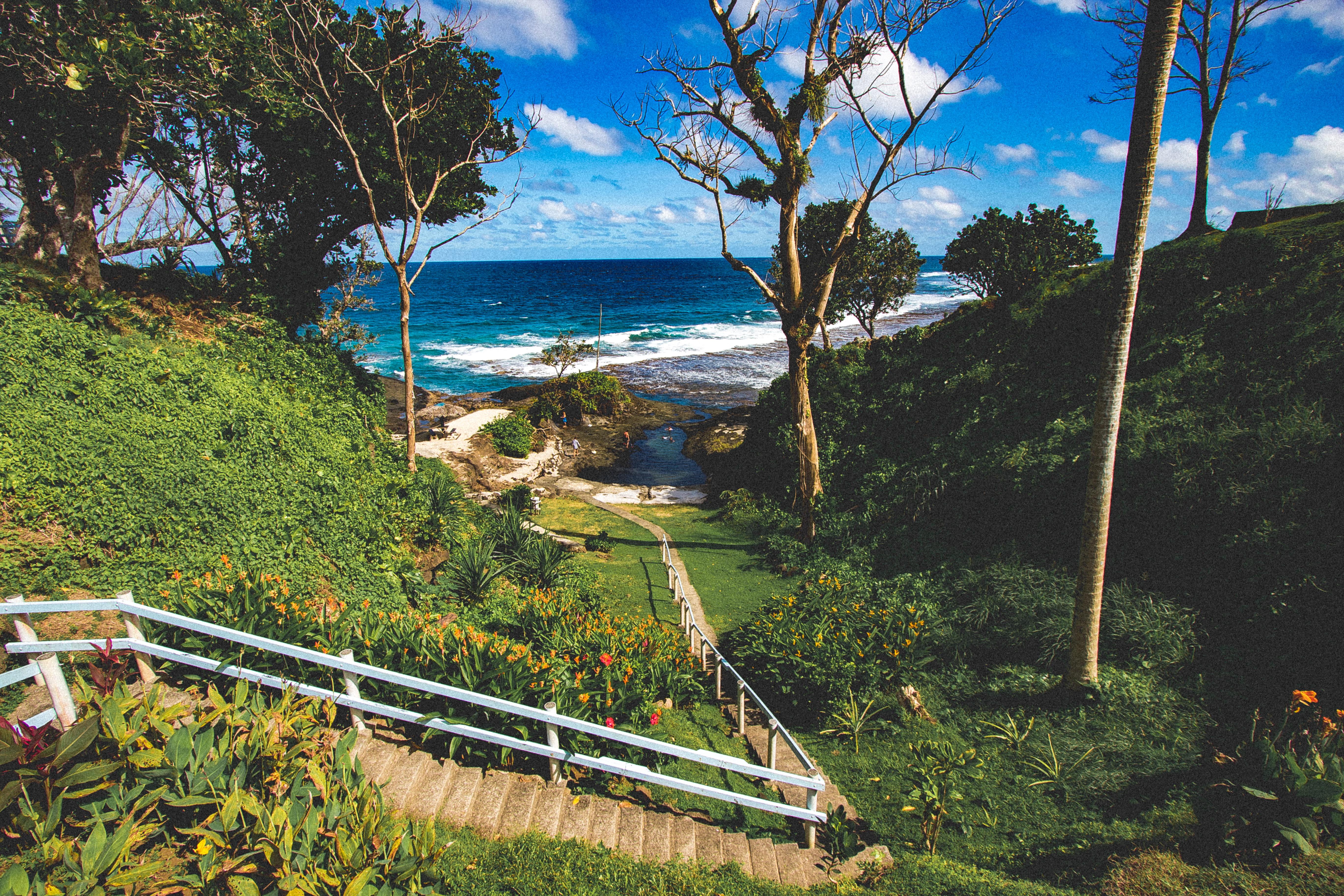 Global Health Bulletin - Samoa