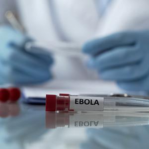 Global Health Bulletin – April 2019 | Collinson